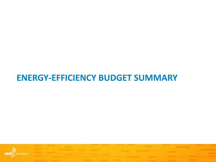 Energy-Efficiency Budget Summary
