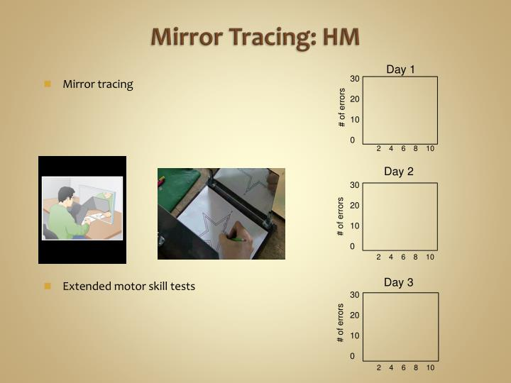 Mirror Tracing: HM