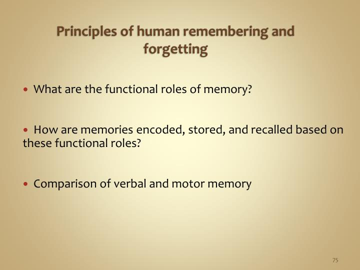 Principles of human remembering and forgetting