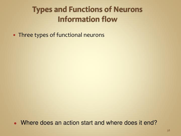 Types and Functions of