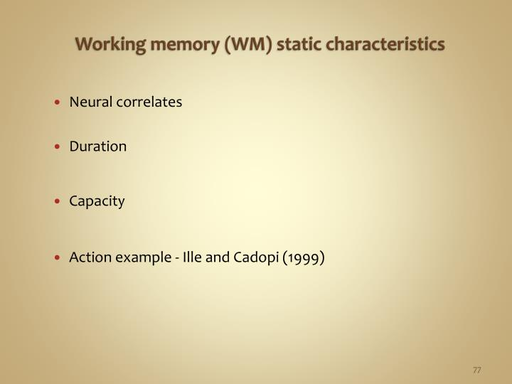 Working memory (WM) static characteristics