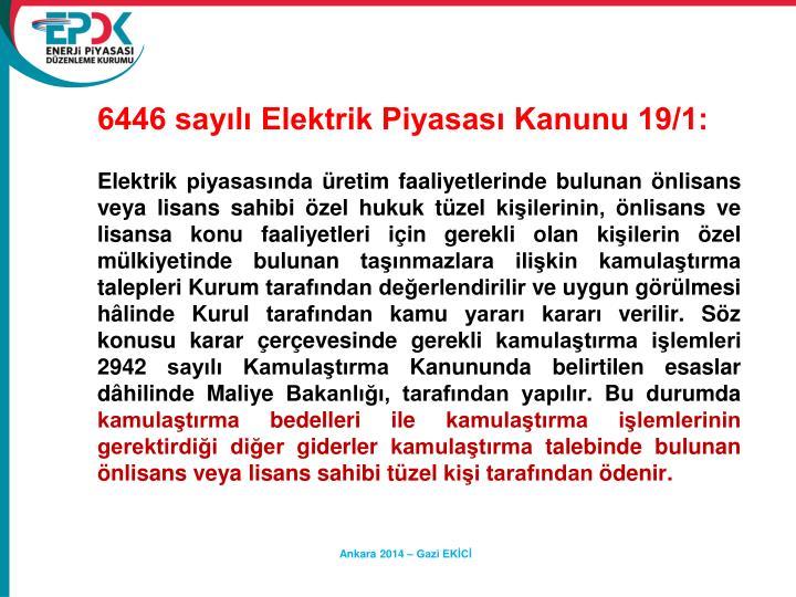 6446 sayl Elektrik Piyasas Kanunu 19/1: