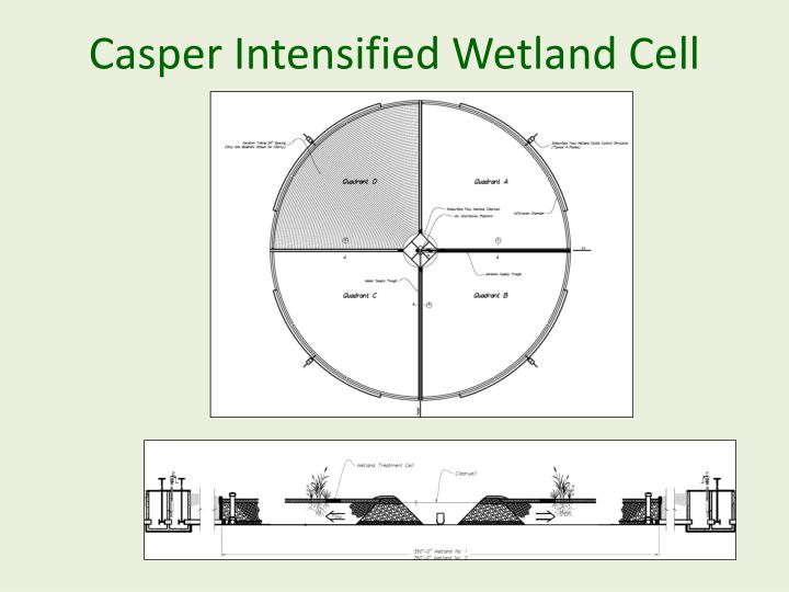 Casper Intensified Wetland Cell
