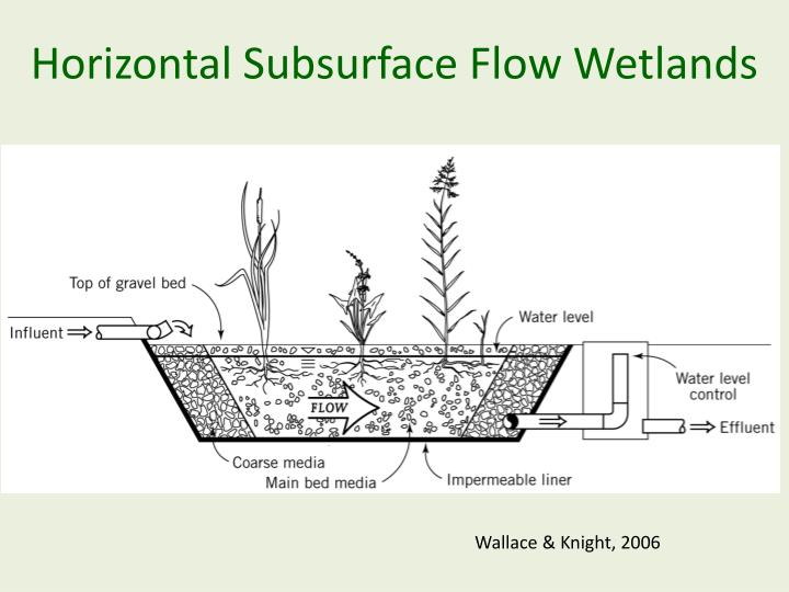 Horizontal Subsurface Flow Wetlands