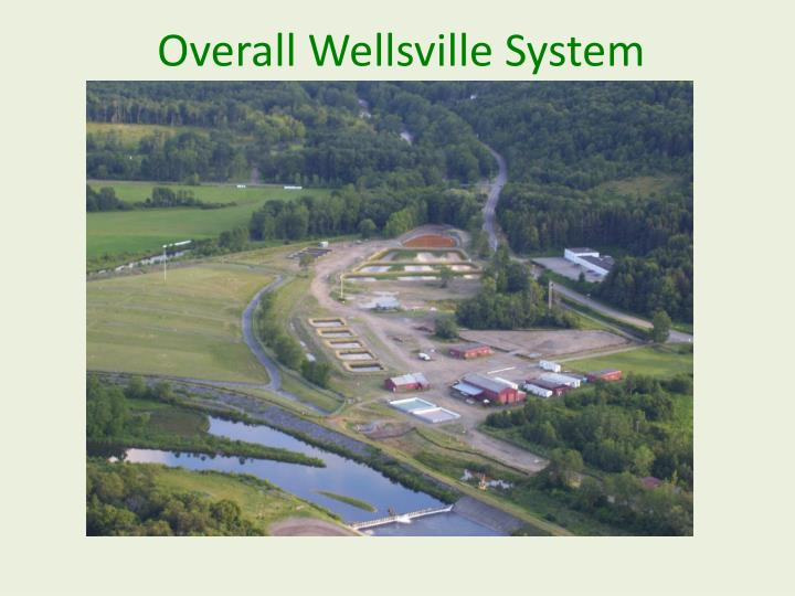 Overall Wellsville System