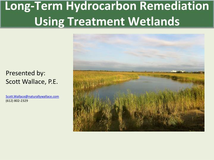 Long-Term Hydrocarbon Remediation Using Treatment Wetlands