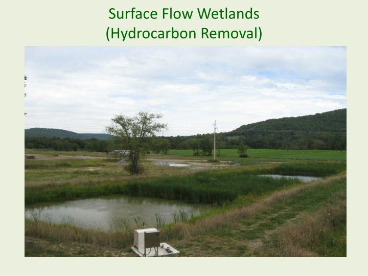 Surface Flow Wetlands