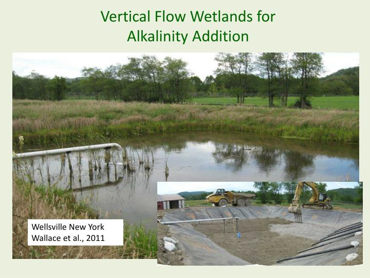 Vertical Flow Wetlands for