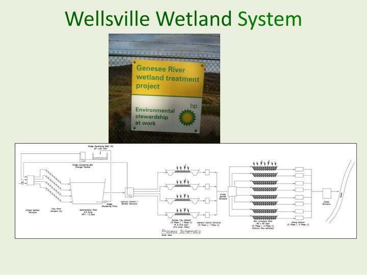 Wellsville Wetland