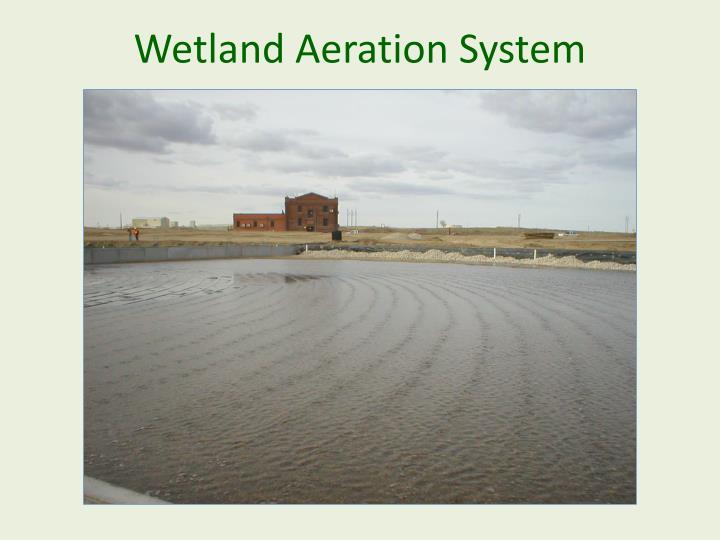 Wetland Aeration System