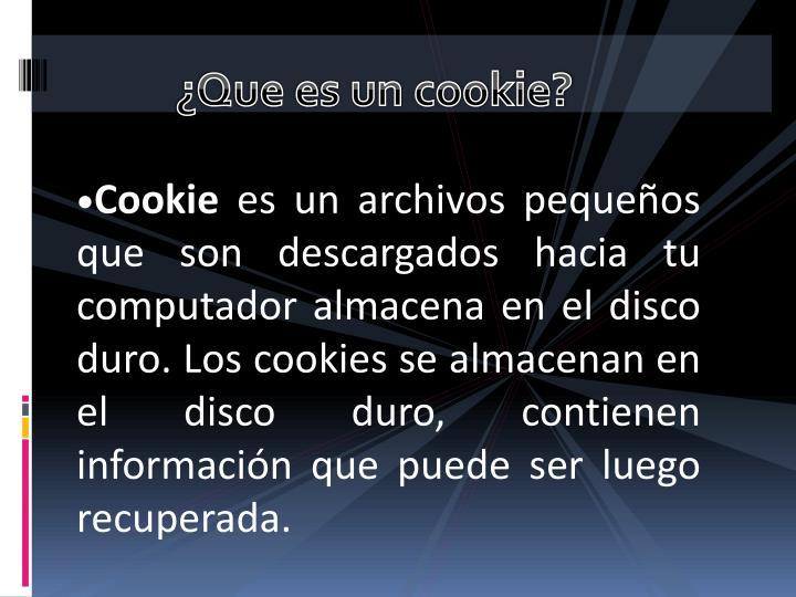 ¿Que es un cookie?