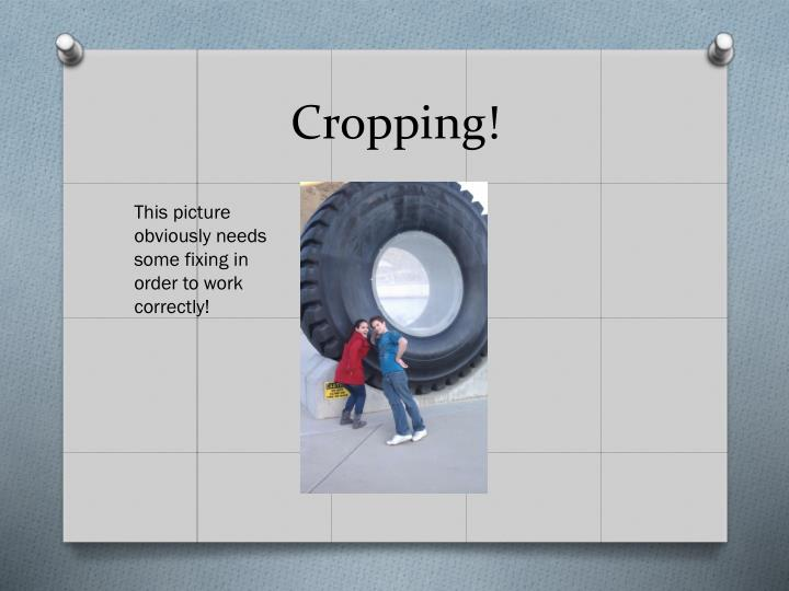 Cropping!