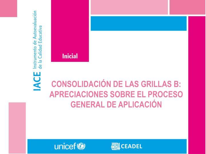 CONSOLIDACIÓN DE LAS GRILLAS B: APRECIACIONES SOBRE EL PROCESO GENERAL DE APLICACIÓN