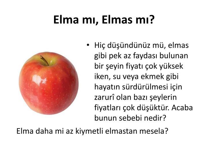 Elma m