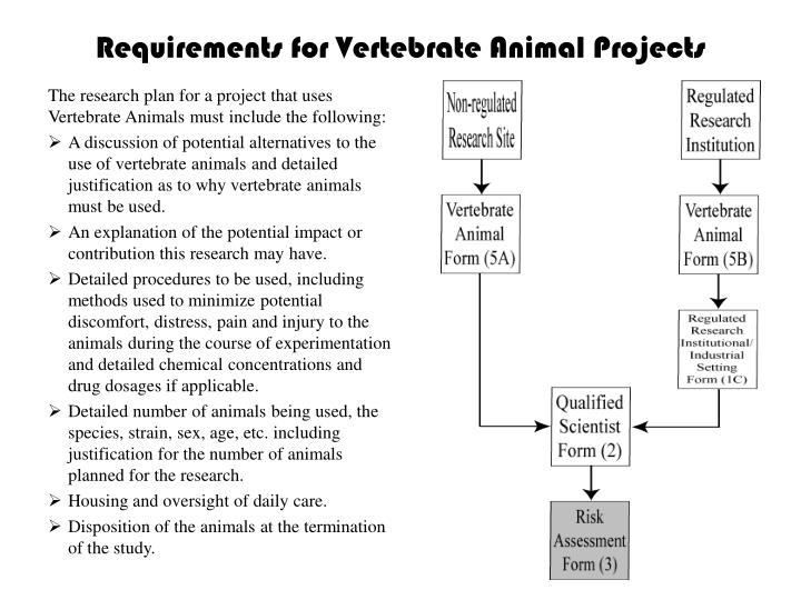 Requirements for Vertebrate Animal Projects