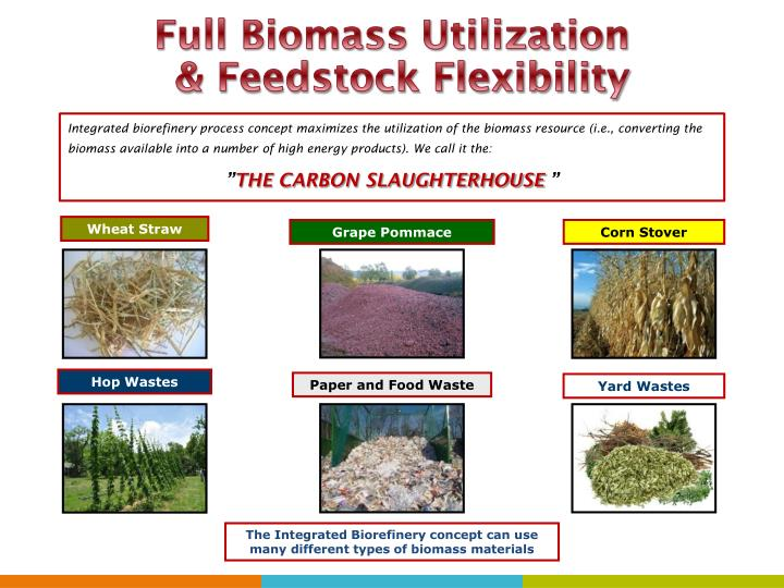 Full Biomass Utilization