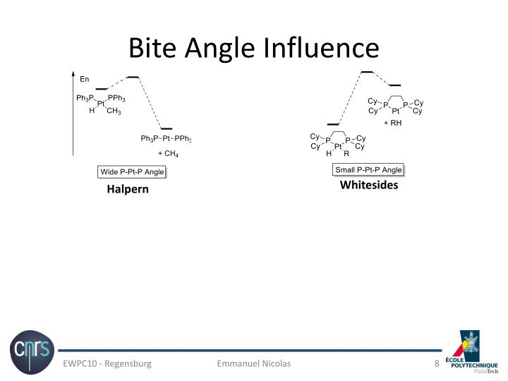 Bite Angle Influence