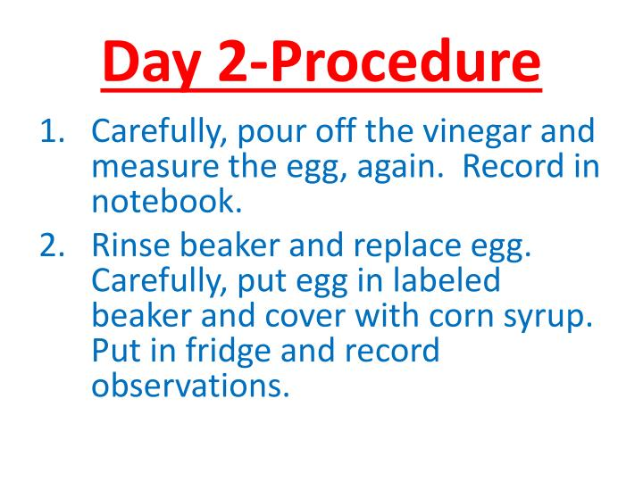 Day 2-Procedure