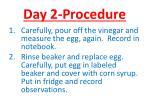 day 2 procedure
