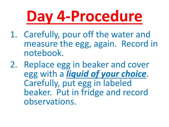 Day 4-Procedure