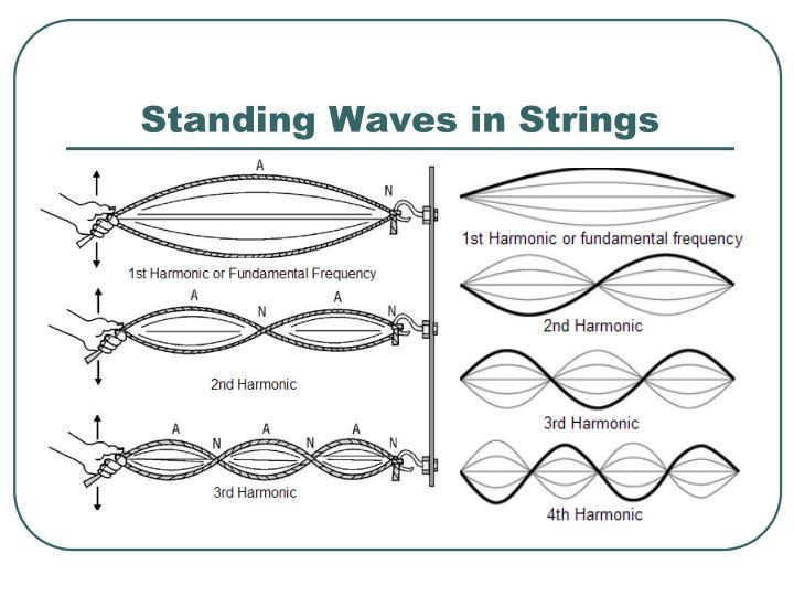 Standing Waves in Strings