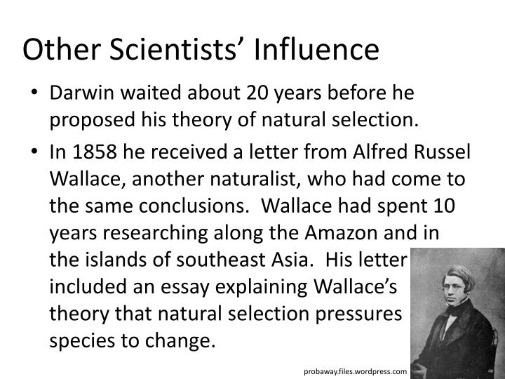 darwin essay population