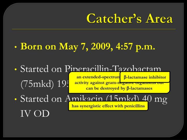 Catcher's Area