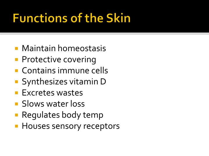 Functions of the Skin