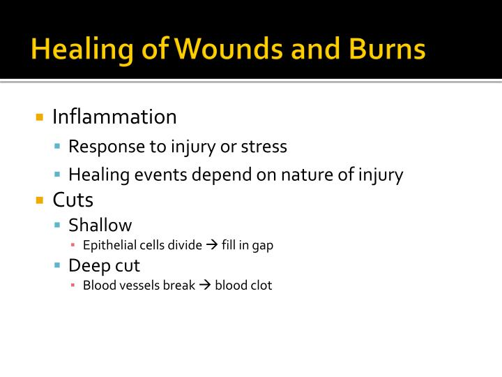 Healing of Wounds and Burns