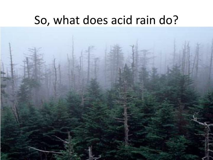 So, what does acid rain do?