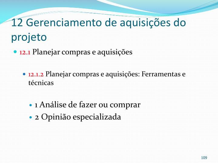 12 Gerenciamento de aquisições do projeto