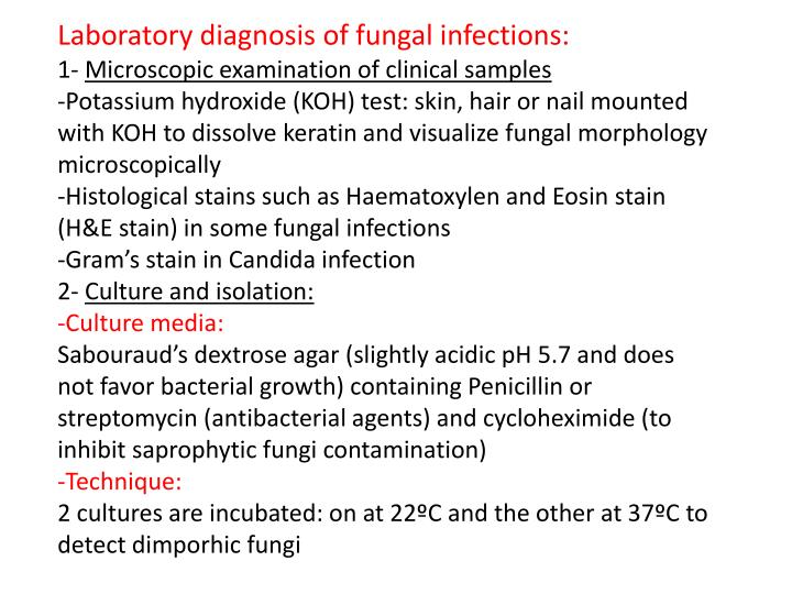 Laboratory diagnosis of fungal infections: