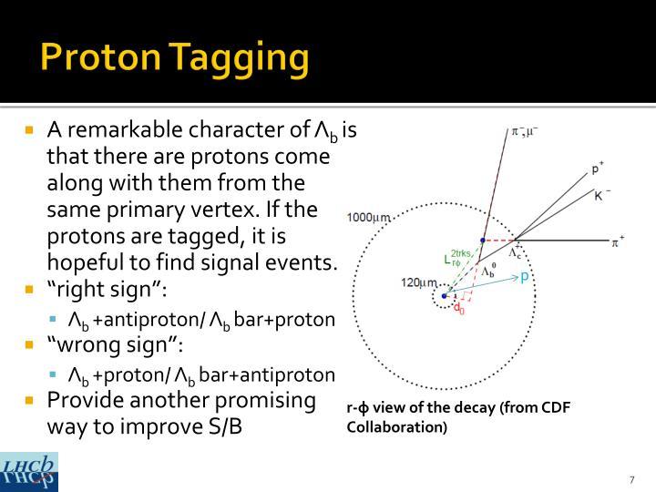 Proton Tagging