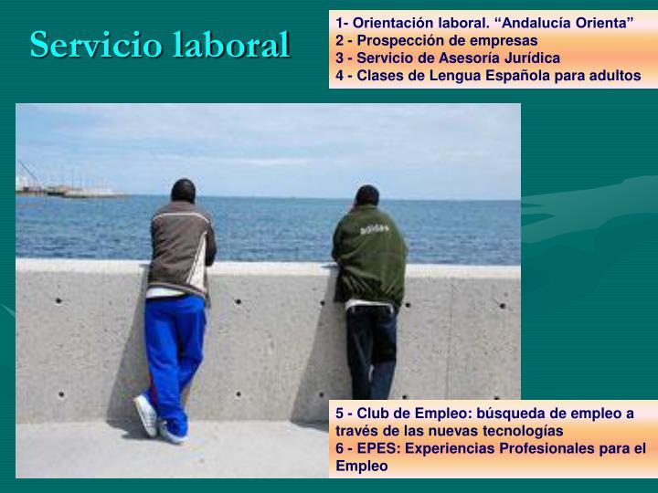 """1- Orientación laboral. """"Andalucía Orienta"""""""