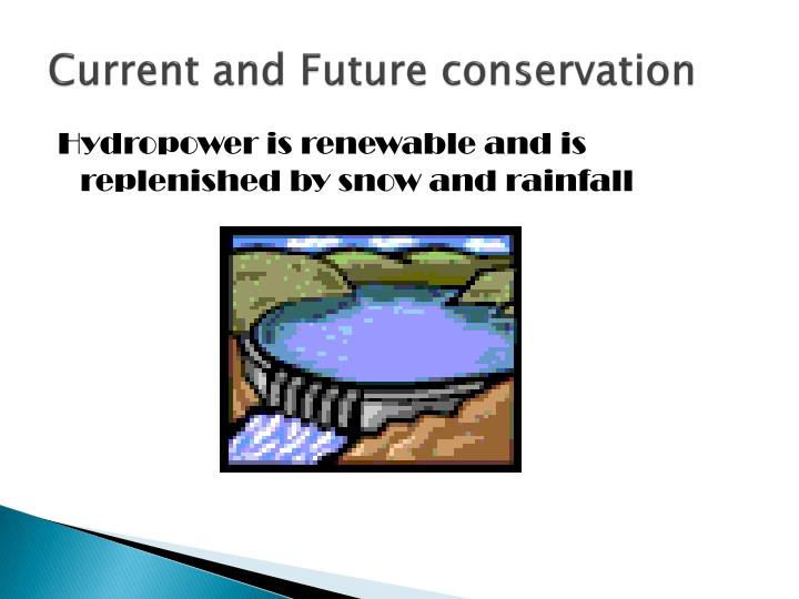 Current and Future conservation
