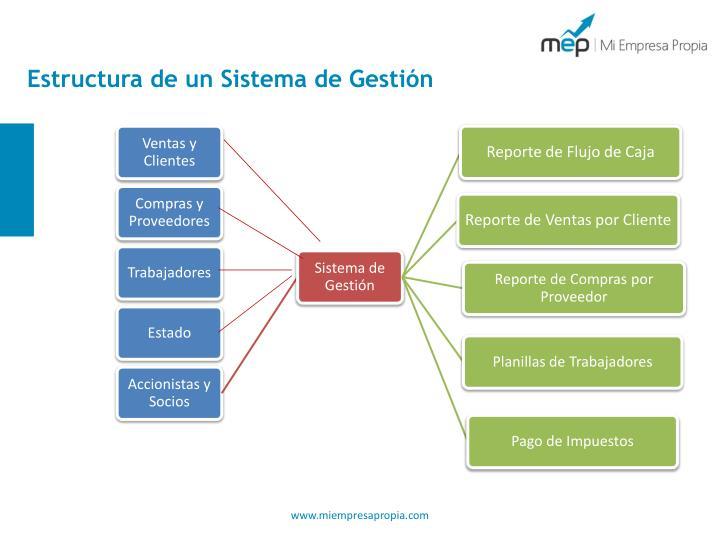 Estructura de un Sistema de Gestión