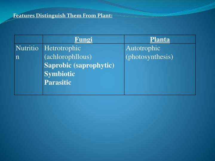 Features Distinguish Them From Plant: