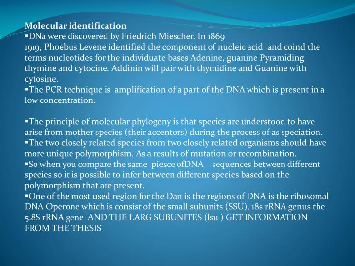 Molecular identification