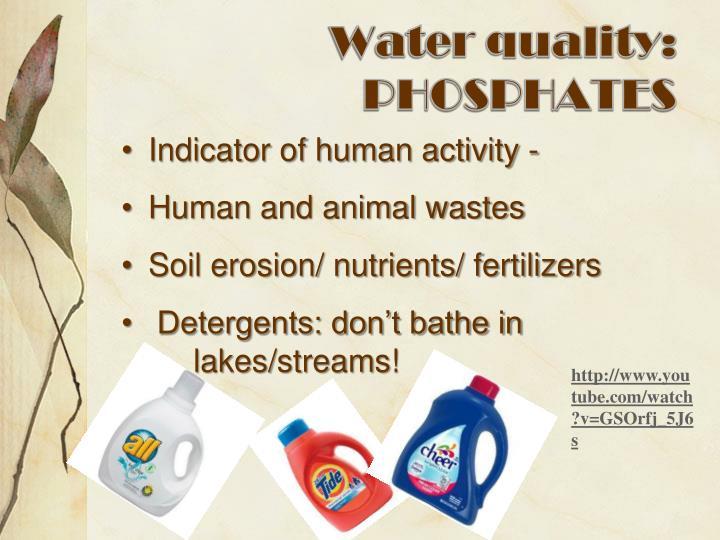 Water quality: PHOSPHATES