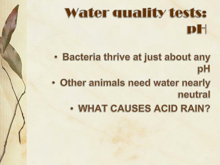 Water quality tests:
