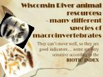 wisconsin river animal resources many different species of macroinvertebrates