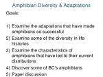 amphibian diversity adaptations