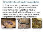 characteristics of modern amphibians1