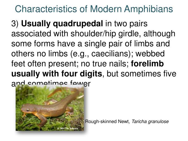 Characteristics of Modern Amphibians