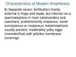 characteristics of modern amphibians8