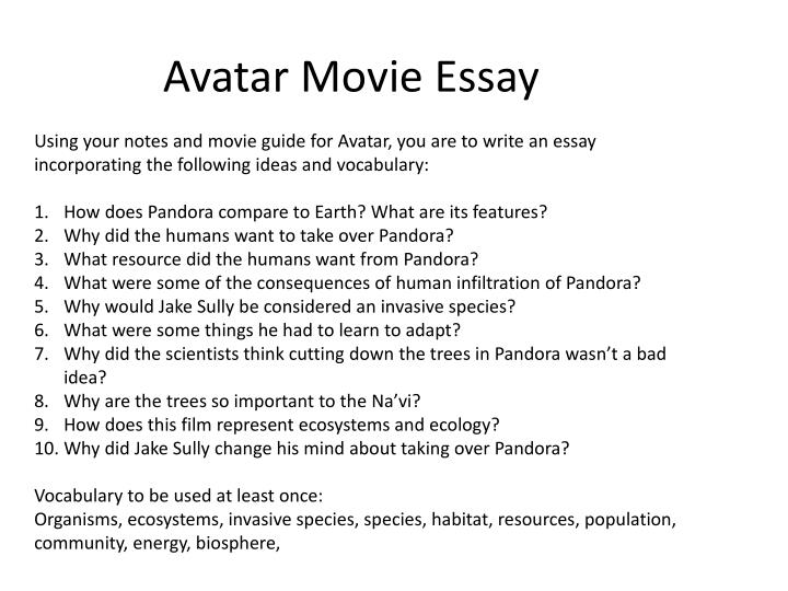 Essay A Movie