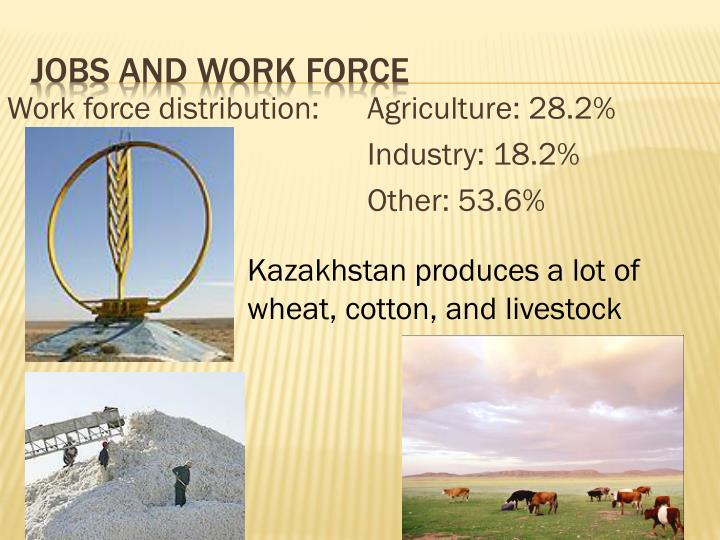 Work force distribution:Agriculture: 28.2%