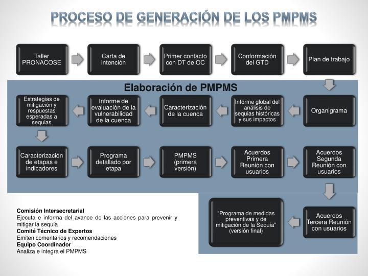 Proceso de generación de los PMPMS