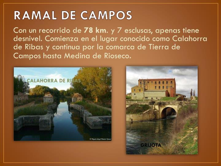 RAMAL DE CAMPOS