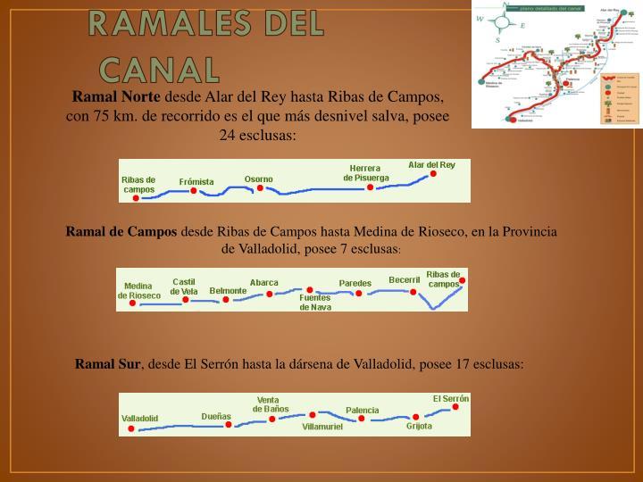 RAMALES DEL